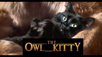 Star Wars'tan Jurassic Park'a; Başrolde Kediler Olursa!