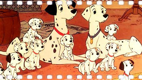 Beyazperde'nin En Kahraman Köpekleri!