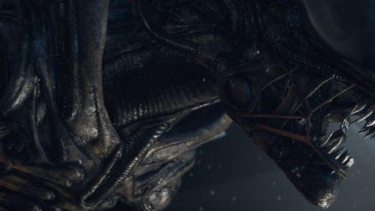 Alien 5 Geçmişini Reddetmiyor!