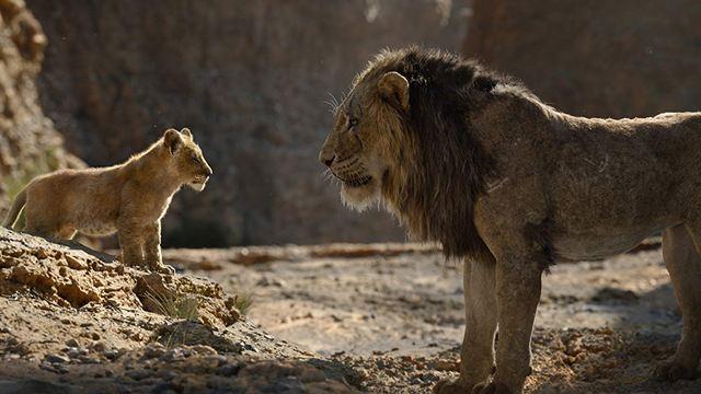 """Yerli Box Office'i """"Aslan Kral"""" İşgal Etti!"""