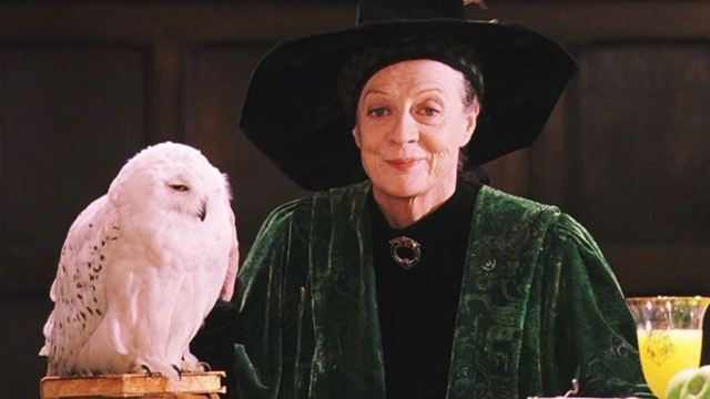 Maggie Smith, Harry Potter ve Downton Abbey'deki Rollerini Tatmin Edici Bulmuyor