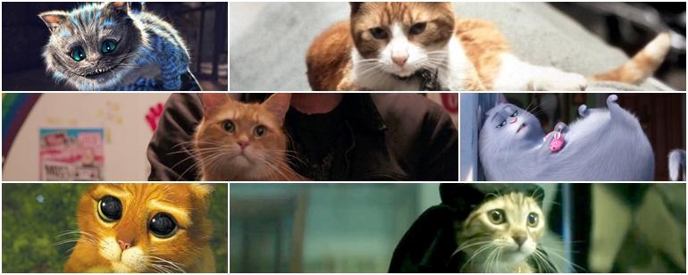 Beyaz Perdenin Ünlü Kedilerini Barındıran 25 Film!