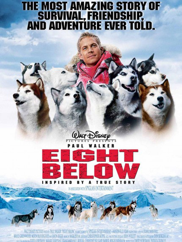Kutup Macerası Eight Below Beyazperdecom