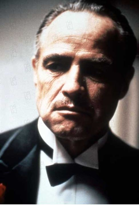 an analysis of the ethos in marlon brandos oscar speech After brando, the deluge of oscar politics but brando's speech really broke the mold alongside news analysis and daily reporting.
