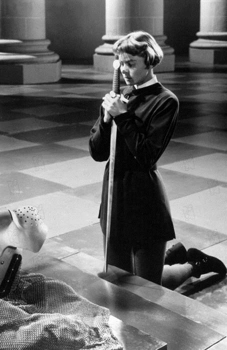 Fotograf Ingrid Bergman, Victor Fleming