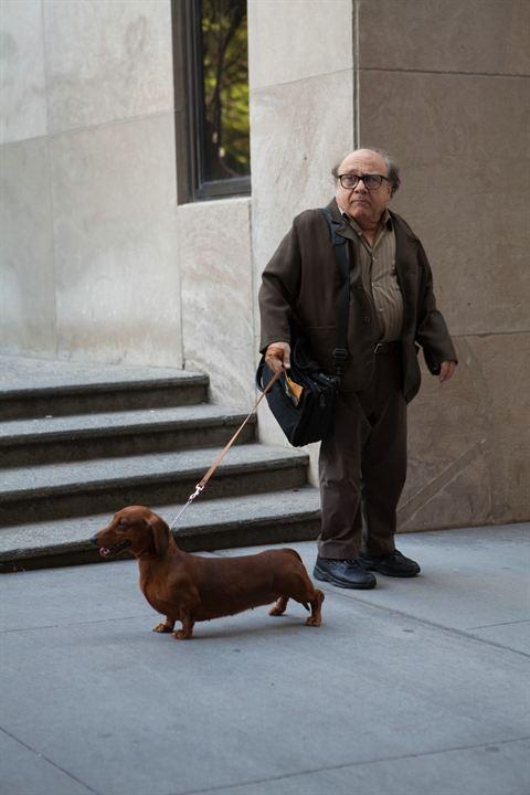 Wiener-Dog : Fotograf Danny DeVito