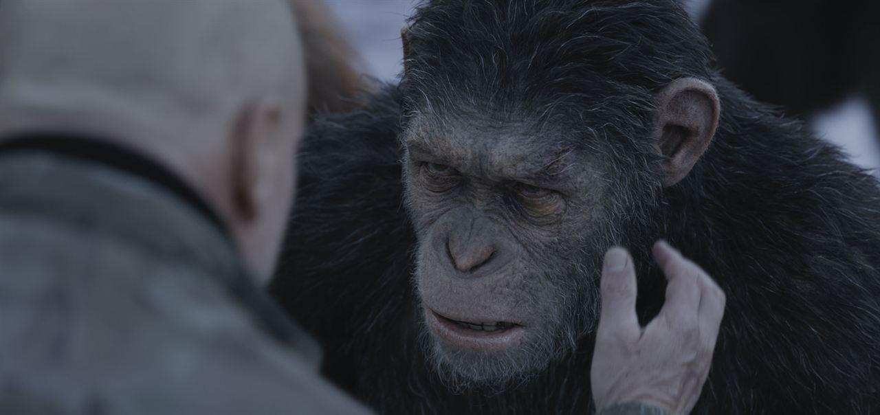Maymunlar Cehennemi: Savas : Fotograf