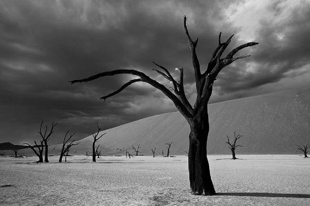 Boyali Kus : Fotograf