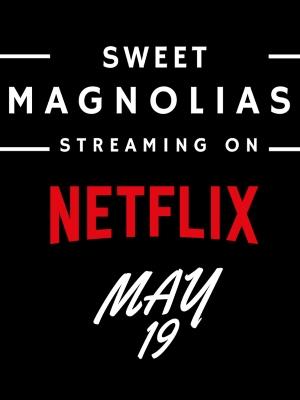 Sweet Magnolias : Afis