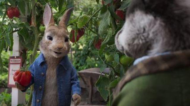 Peter Rabbit: Kaçak Tavşan Dublajlı Fragman